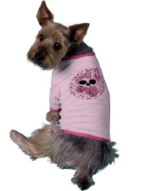 Skull Designs on Pet Clothing
